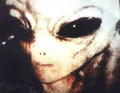 Types of Aliens - Greys, Reptilians and more. image 1