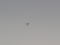 Military drone or a UFO high up in the sky image 62